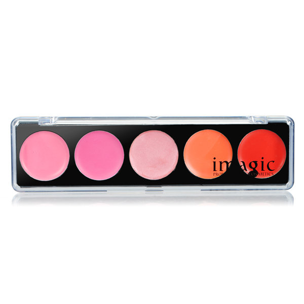 IM 5 Colors lipstick Lip Gloss Palette Makeup Beauty