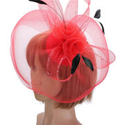 Wedding Races Party Fascinator Veil Net Hat Cones Feathers Hatinator