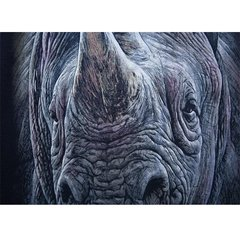 Summer Mens Plus Size Unique Rhino 3D Animal Printing Short Sleeved Casual T-shirts