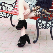 Lace Pointed Toe Lace Up High Heel Ankle Shoes
