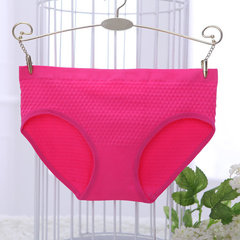 Multiple Color Cozy Panties Soft Seamless Breathable Low Waist Underwear For Women