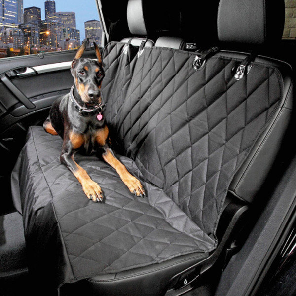 Dog sitting on pet-proof seat cover in car