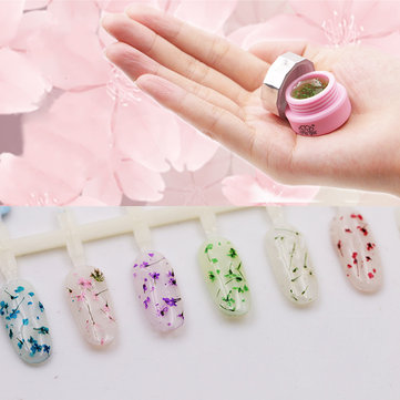 CHE GEL 6 Colors Natural Dried Flowers UV Gel Polish Lasting Soak Off Nail Varnish Lacquer
